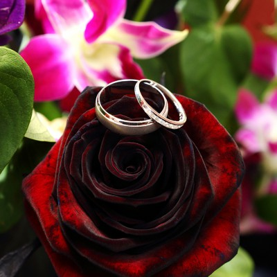 Wedding rings placed on top of a deep reddy black rose in a buquet.